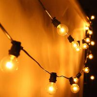 AU 20M G40 Globe Light With 24PCS Clear Bulbs Waterproof Indoor Outdoor Garden Party Wedding Holiday