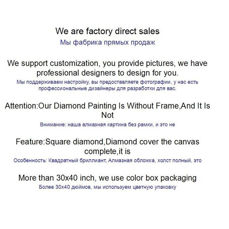 стежка в 5D полный алмазов картина сова Алмаз вышивка по фотографии, алмазная мозаика Креста стежка украшения дома аксессуары