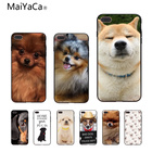MaiYaCa cute dog Wacky Husky &PUG Customized pictures Soft Rubber Black Phone Case For Apple iPhone X 8 8plus 7 7plus 6 6s Cover