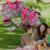 Envío Gratis Multifuncional Bolsas Mochilas Bolsos de la Momia Del Pañal Del Bebé Mochilas 6 unids