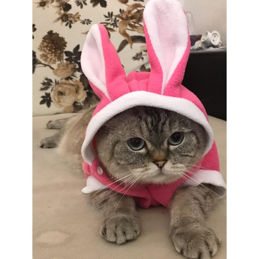 Soft Fleece Cat Costume Rabbit Suit Cute Rabbit Coat for Cat
