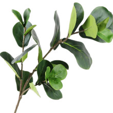 4pcs Fake Ficus lyrata Leaf Branches Simulation Green Ficus lyrata Leaf Tree Stems Greenery Decorative Artificial Green Plant