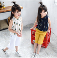 2016 New Summer Children Girls Clothing Set Chiffon Cactus Shirt Tops Blouse Wide Leg Pant Twinset Baby Kids Clothes Suits