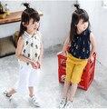 2016 Novas Crianças de Verão Meninas Conjunto de Roupas Chiffon Camisa Tops Blusa Ampla Perna Da Calça Twinset Bebê Cactus Crianças Roupas Ternos