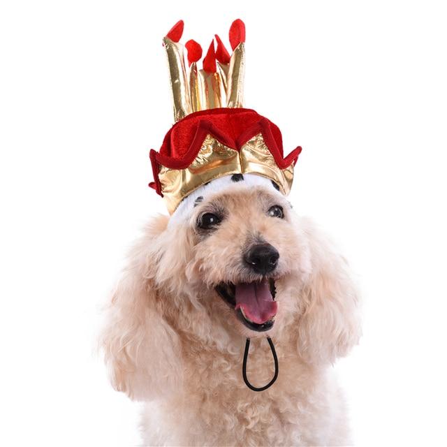 Perro sombrero de cumpleaños cake modelo sombrero para mascotas Gatos  Perros grooming Accesorios 1c3c34cf4c4
