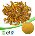 Природные Coptis Extract Powder, берберин Порошок Корня, Берберин Гидрохлорид