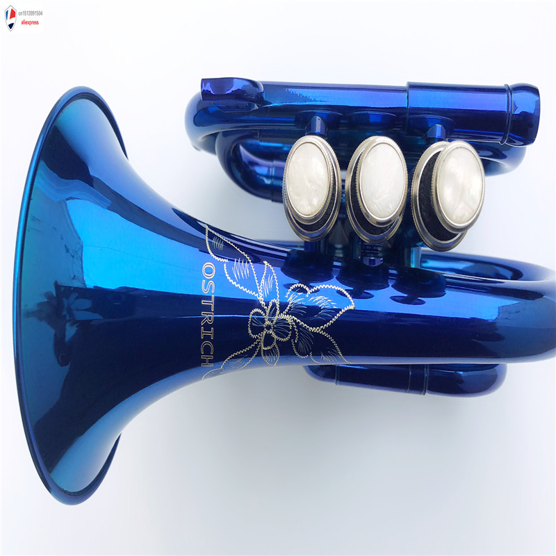 NEW Pocket Trumpet Blue Band Student Beginner Starter Gift Intermediate