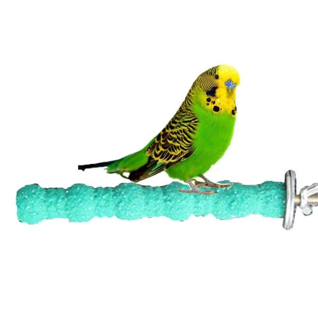 Bird Wood Perch Stand Paw Grinding Stick Platform for Parrot Budgies Parakeet Cockatiels Conure Cage Accessories (Random Color)