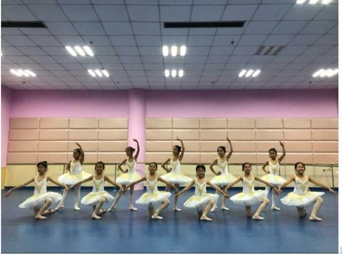 Nuovo Balletto Professionale Abiti Bambini di Sfera Tutu Lago Dei Cigni Costumi Bambini Pancake Cosplay Delle Ragazze Dancewear Body Dress