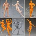 6 corpo estilo chan pálido orange cor cinza 13 cm figma ela/ele shf s. h. figuarts (SHF) PVC Action Figure In Box