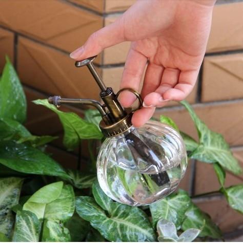 Antique style garden transparent glass ws