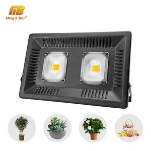 Image 1 - Led Grow Light Floodlight Full Spectrum Phyto Lamp IP65 110V 220V AC Grow Light 30W 50W 100W 150W For Plant Growth