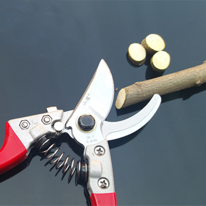 1 szt. 8-calowy zabarwiony plastikowy uchwyt Profesjonalne narzędzie - Narzędzia ogrodnicze - Zdjęcie 4
