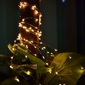 5 M 50LED 3 x AA Baterias Alimentado LED Decoração de Cobre Lâmpadas de Luzes de Fadas String para Festa de Casamento Do Feriado Do Natal do fio PTSP