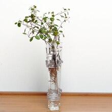 JUMAYO SHOP COLLECTIONS – UNIQUE FLOWER VASE