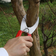 2019 Garden Tools Ring Cutting Scissors Fruit Tree Picking Easy And Convenient Home Gardening Cutter Safety