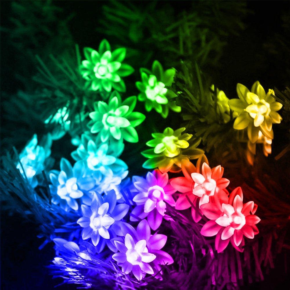 Lotus Shaped Waterproof LED Fairy Lights 2