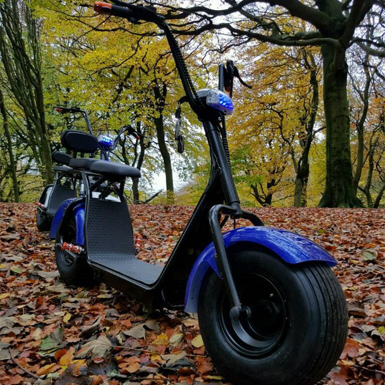 Full Spec 1000W 60V Powerful Hydraulic Electric Scooter halley
