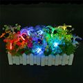 Fiber Fairy Led String Light Garland Outdoor 2.5M 10Leds Optic Christmas String Light 9 colors battery Powered Wedding Light
