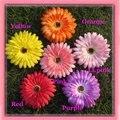Free shipping!6colors for your choose 4'' Daisy flower  hoilday hair flower hair clip hair holder