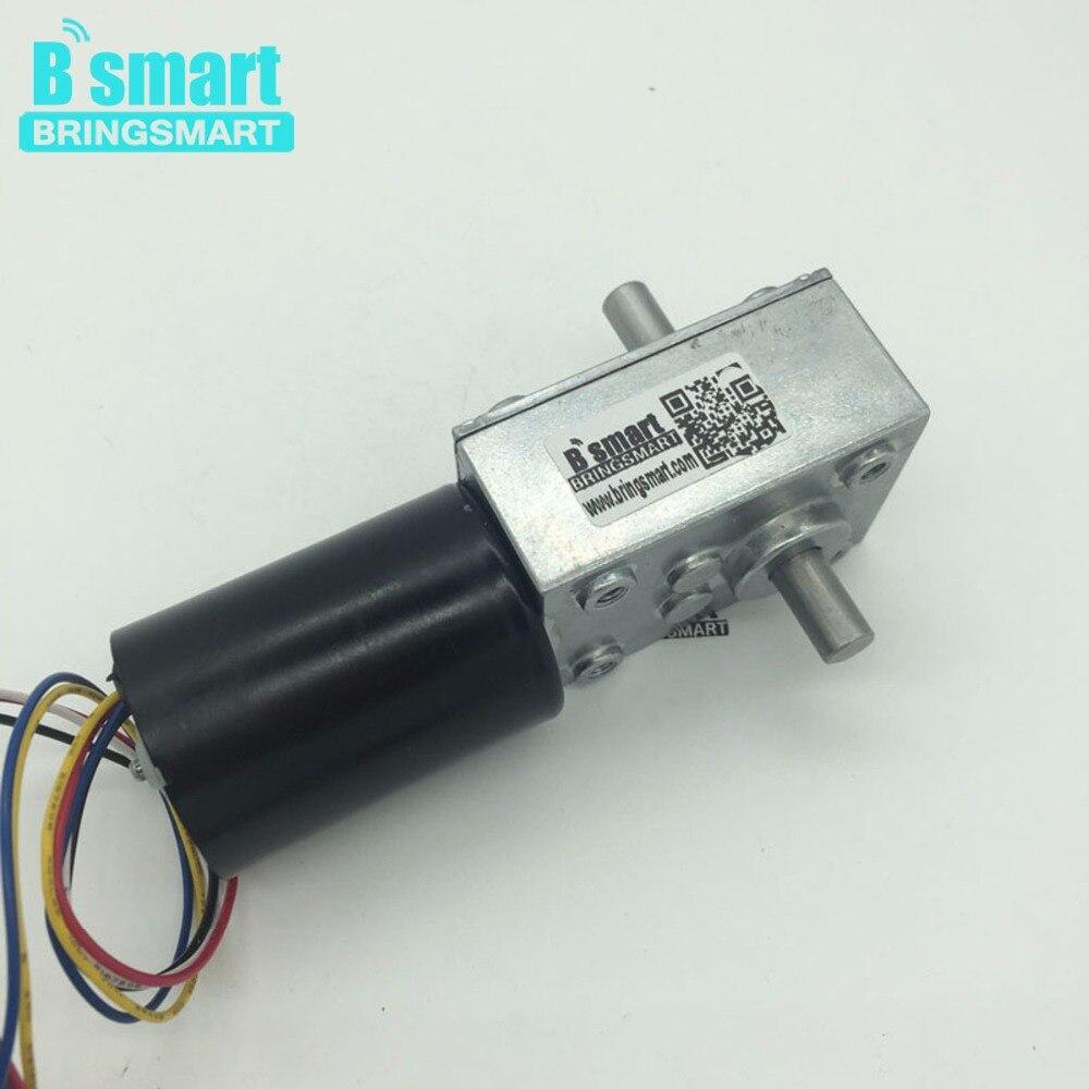 BringSmart moteur électrique BLDC à couple élevé Double arbre de haute qualité 24V moteur à engrenages à vis sans fin sans balais DC 12V Micro moteur 5840-3650
