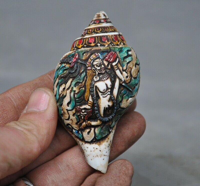 wedding decoration Tibetan Buddhism conch shell Painted carved Bulmo tara Conch Trumpet Horn Shellwedding decoration Tibetan Buddhism conch shell Painted carved Bulmo tara Conch Trumpet Horn Shell