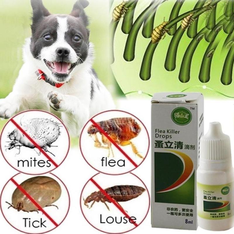 8ml Pet Dog Cat Anti-flea Drop Insecticide Flea Lice Insect Killer Liquid Pet Insect Killer Spray For Dog Cat Puppy Treatment