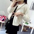 2074 shot in the autumn of 2015 new hair metal zipper cardigan Collar Badge Korean women