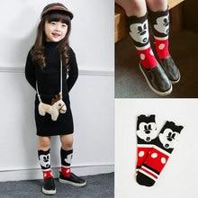 Детские гетры Kids Fox Socks knee