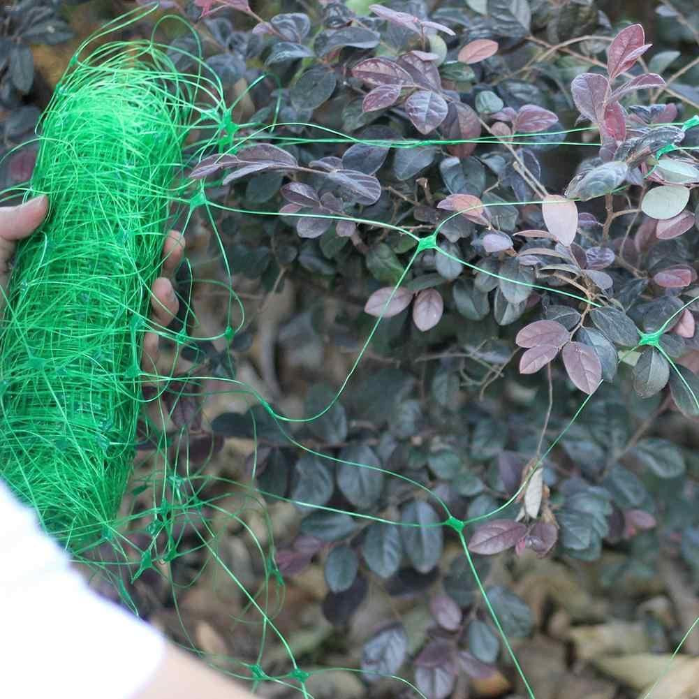 2x10 M légumes jardin décoration jardinage Net oiseau Net en plastique Net vert en gros jardin clôture maille plante vignes escalade Net