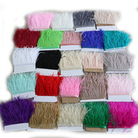 10 meters / lot Ostrich feather edge 10 15cm color ostrich feathers ribbon clothing accessories ostrich hair skirt 15colors