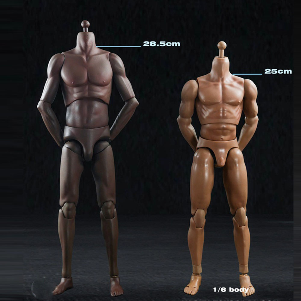 Steel Skeleton 1//6 Scale Models 12 inch Male Figure Body /& Accessories
