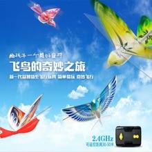 RC Bird RC Airplane 2.4 GHz Remote Contr