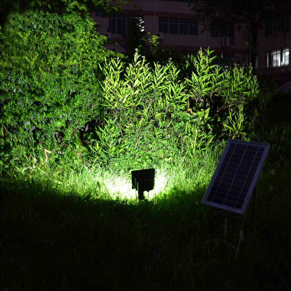 China solar lamp Suppliers