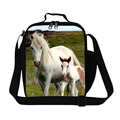 Dispalang White Horse Lunch Bags for Girls Fashion Small Lunch Cooler Bags for Children School Adults Work Lunch Container Food