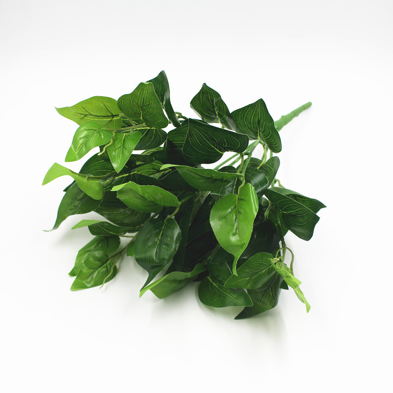 Chinese Evergreen Houseplant Care Guide - That Planty Life ... |Wholesale Silk Plants Chinese Evergreen House
