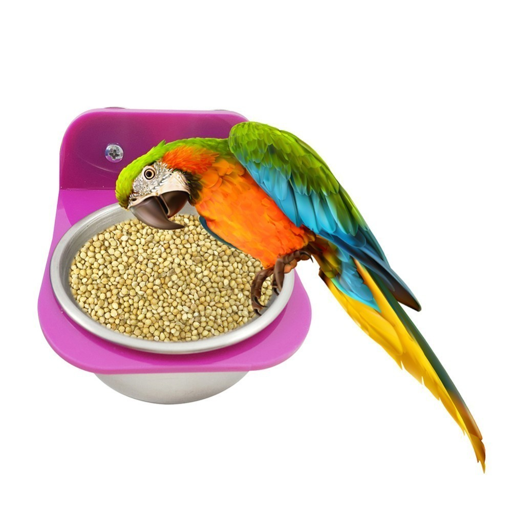 Stainless Steel Parrot Bird Feeders Food Water Feeding Bird Cups With Clamp Parakeet Cage Stand Holder Bird Supply
