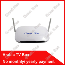 2017 cheapest Arabic IPTV box,Great Bee arabic tv box ,free shipping no monthly fee Arabic tv box support 400 Arabic channel