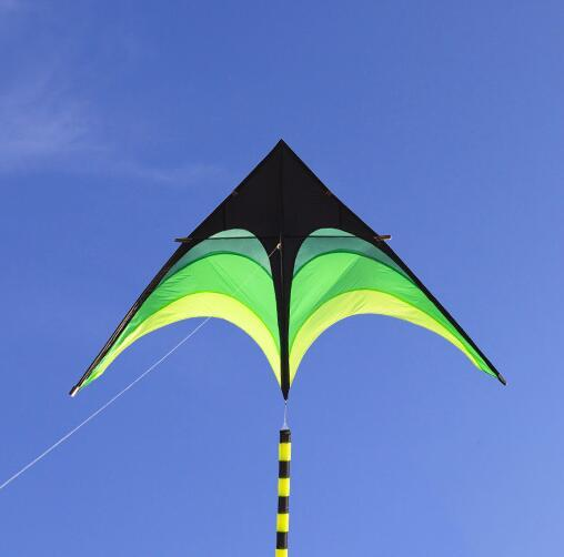free shipping high quality large delta kites tails with handle outdoor toys for kids kites nylon ripstop albatross kite factory 1