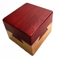 201 High Quality Educational Games Toys Wooden Puzzle IQ Brain Teaser Kong Ming Lock Lu Ban