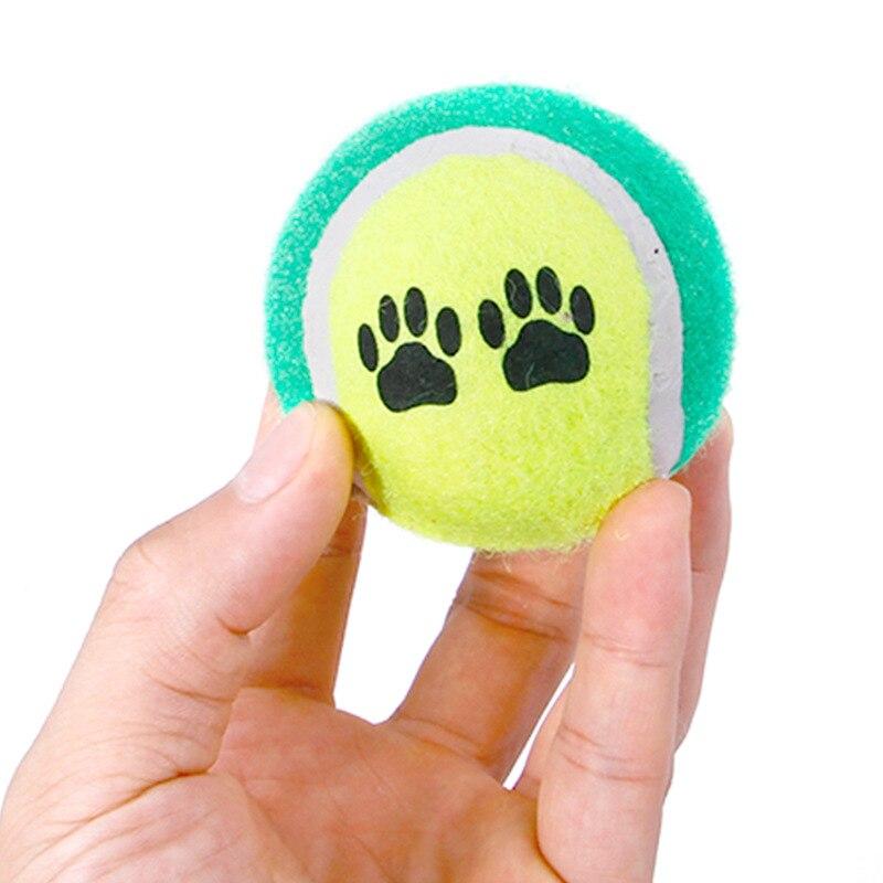 100 stücke Candy farbe Hund Spielzeug Tennis Balls Run Fangen Werfen Spielen Spielzeug Kauen Spielzeug-in Hundespielzeug aus Heim und Garten bei  Gruppe 3