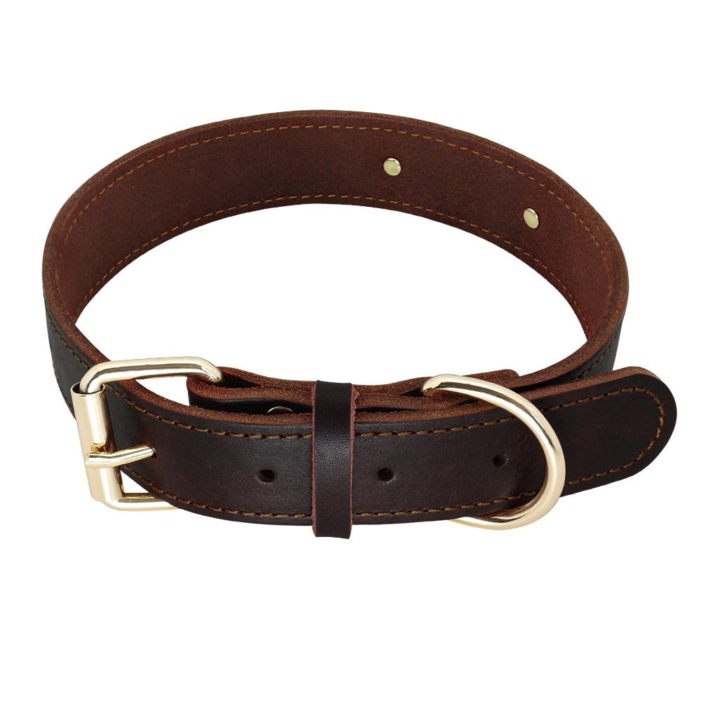 HTB1s4wHXjDuK1RjSszdq6xGLpXat - Halsband hond met naam en telefoonnummer en/of volledig adres leer