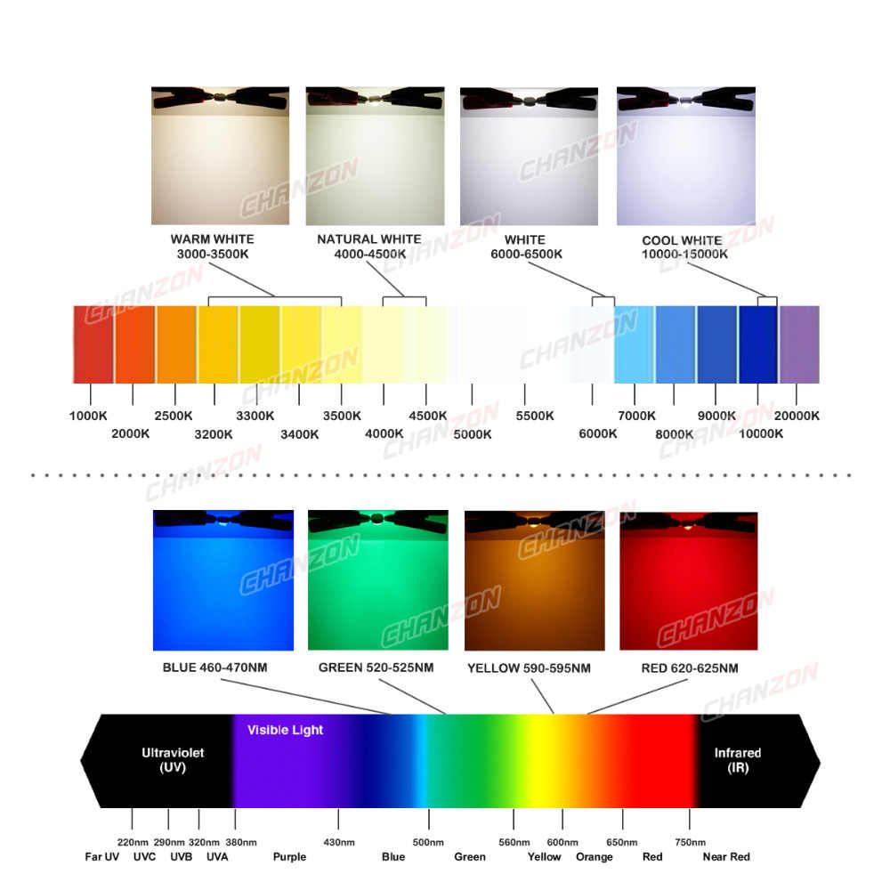 High Power LED COB Lamp Bulbs Chip 1W 3W 5W 10W 20W 30W 50W 100W Warm Cool White Red Green Blue Square Light Matrix Integrated