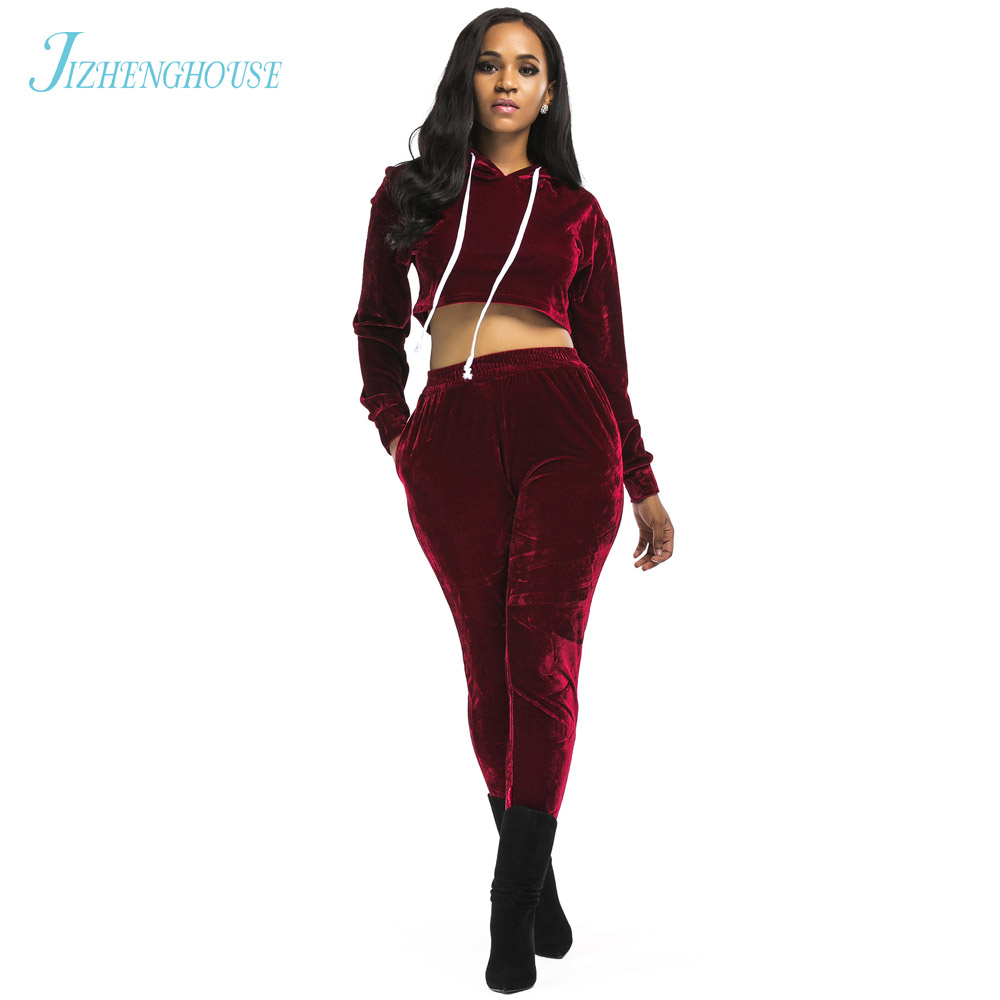 JIZHENGHOUSE Free Shipping Sexy Lady 2 Piece Set Women Autumn Long Sleeve Hoodies Casual Tracksuit For Women Two Piece Set