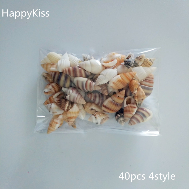 Fashion 40pcs/Lot Small Miscellaneous Conch Natural Craft Sea Shell Aquarium Fish Tank Landscape Home Decor DIY Material