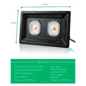 Image 4 - BUYBAY شاشة ليد بطيف كامل ينمو ضوء مقاوم للماء IP67 100 واط 200 واط 300 واط COB نمو كشاف ضوء للنباتات داخلي مشتل زراعة مائيّة