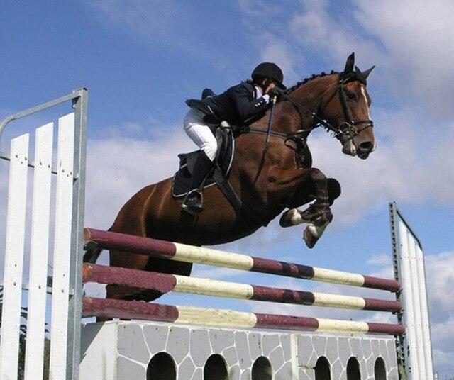 Adjustable Equestrian Horse Riding Helmet  20