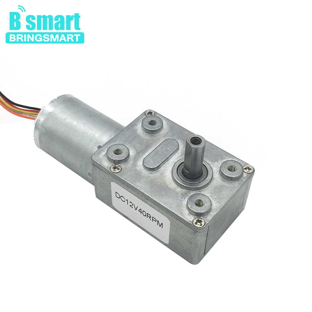 medium resolution of  bringsmart jgy 2430 brushless 12 volt dc worm gear motor self lock reversible gearbox