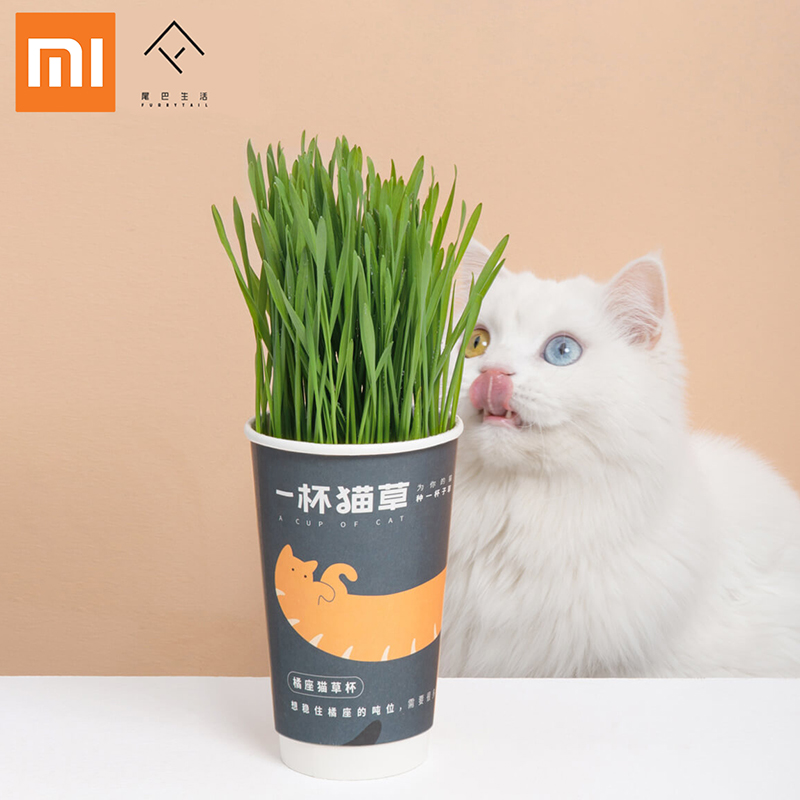 Xiaomi FURRYTAIL A CUP OF CATNIP Used To Add Cat Food To Prevent Trichobezoar Of Pet Cats And Clean Cat Teeth Planted Catmint