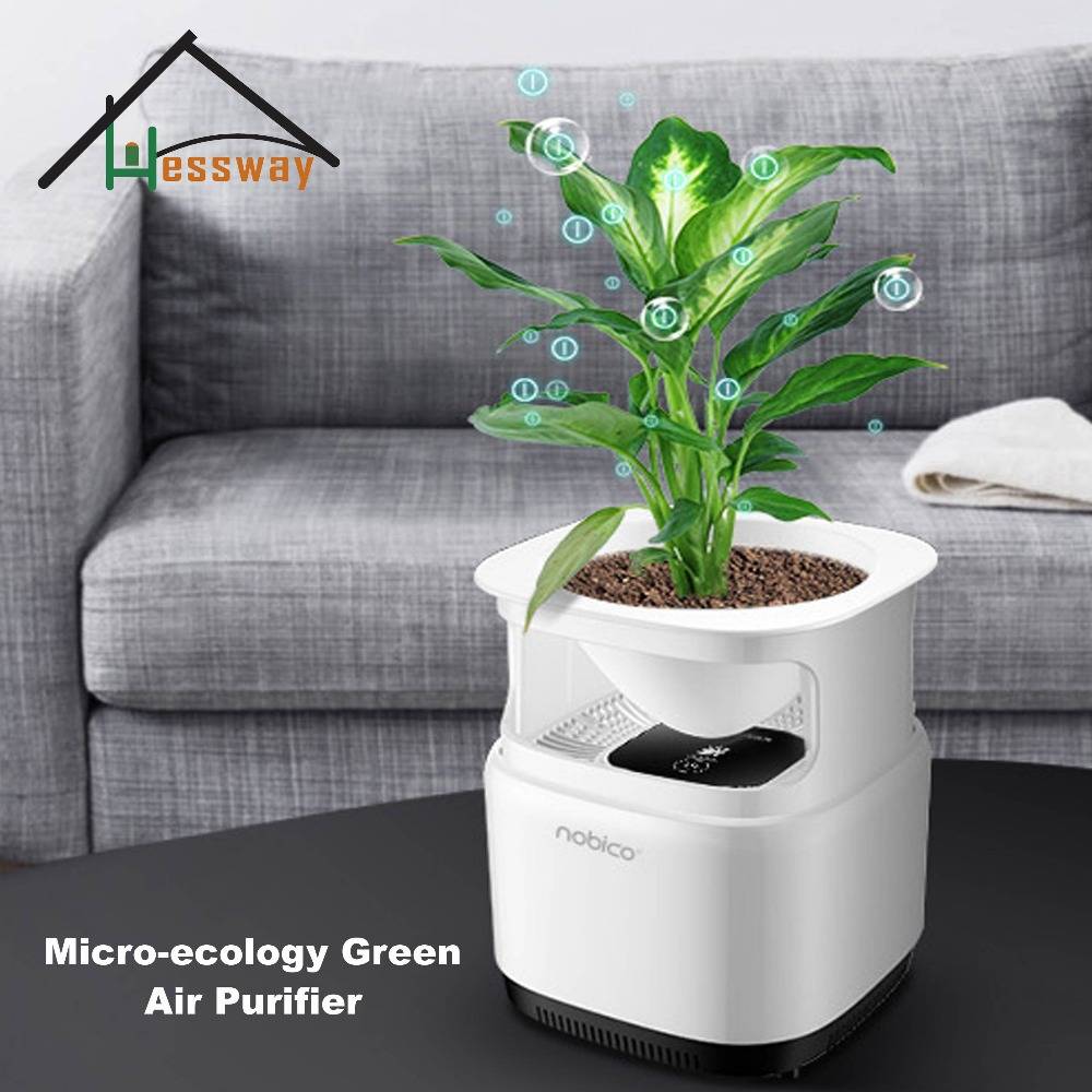 12V Generator Micro ecology Green Air Purifier ioniser natural air purifier for home